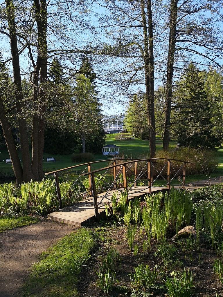 haikko_puutarha