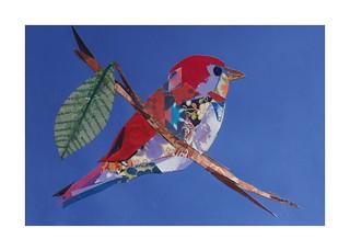 Bird #27