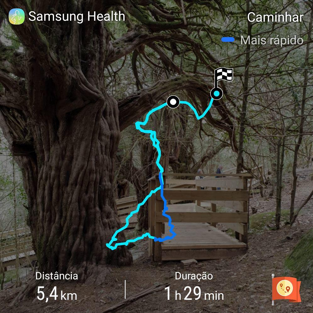 2018.- 35.- Requejo - Caminhada pelo sendero interpretativo del Tejedo ou Teixedo 02 SH