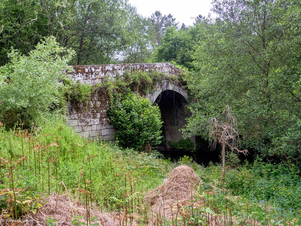 17.- CPIS - 6ª etapa (Ourense-Oseira) (135)