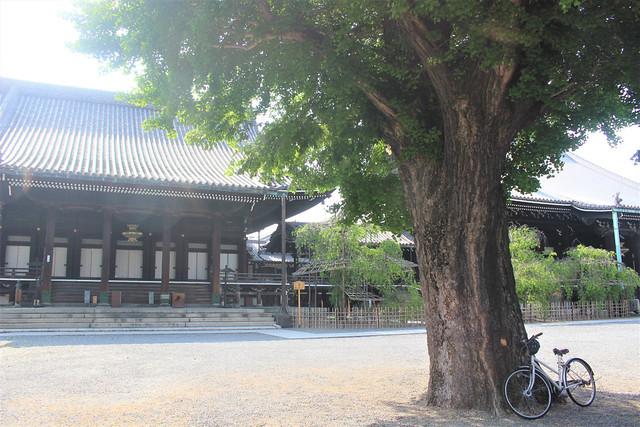 bukkoji-gosyuin04021