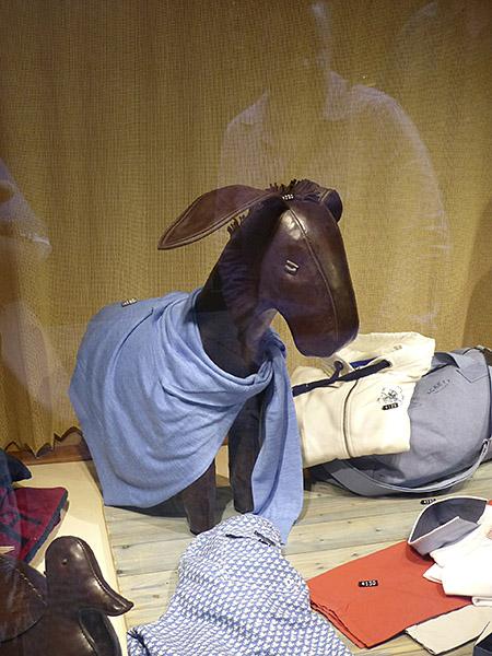 un âne