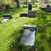 Irvine Old Parish Churchyard (479)