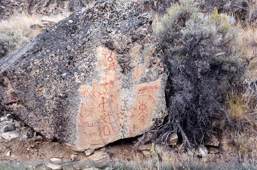 Naramata Sage & Petroglyph