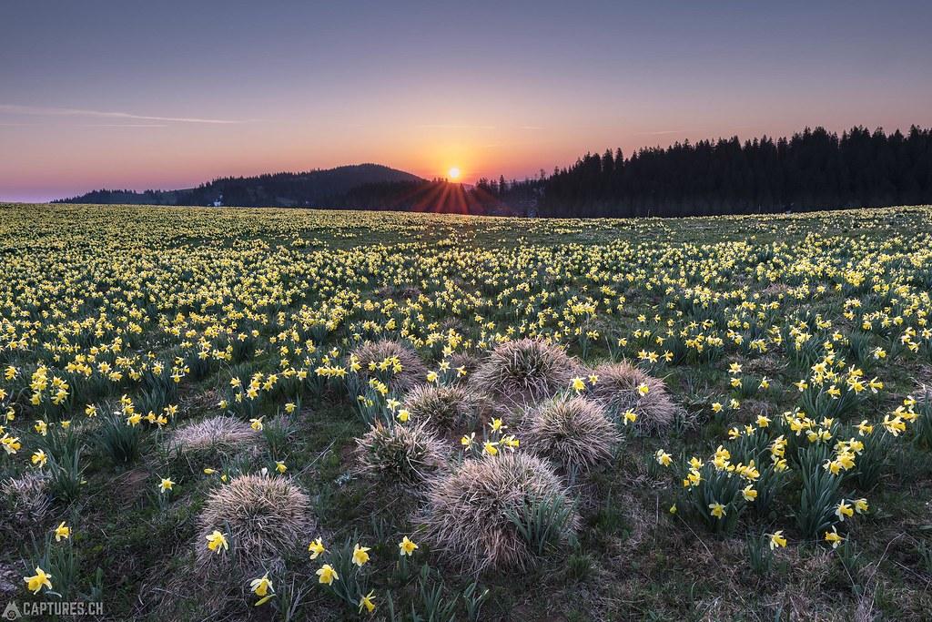 Sunrise - Tete de Ran