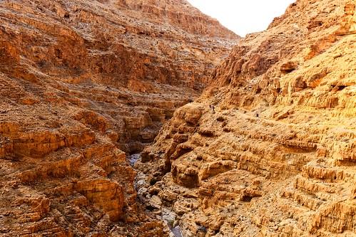 canyondargajudaeandesertisrael canyondarga judaeandesert israel travel travelinisrael isrel desert canyon river hiking traveling