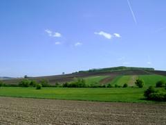 ogoarele patriei/fields of the homeland