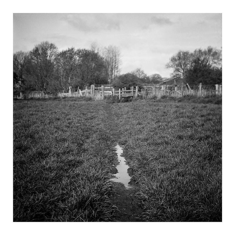 FILM - Across the muddy field
