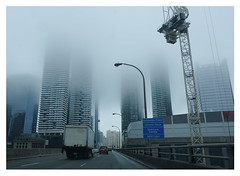 foggy morning, Gardiner