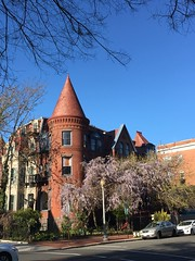 Victorian turret with blue sky and wisteria in bloom, S Street NW, Washington, D.C.