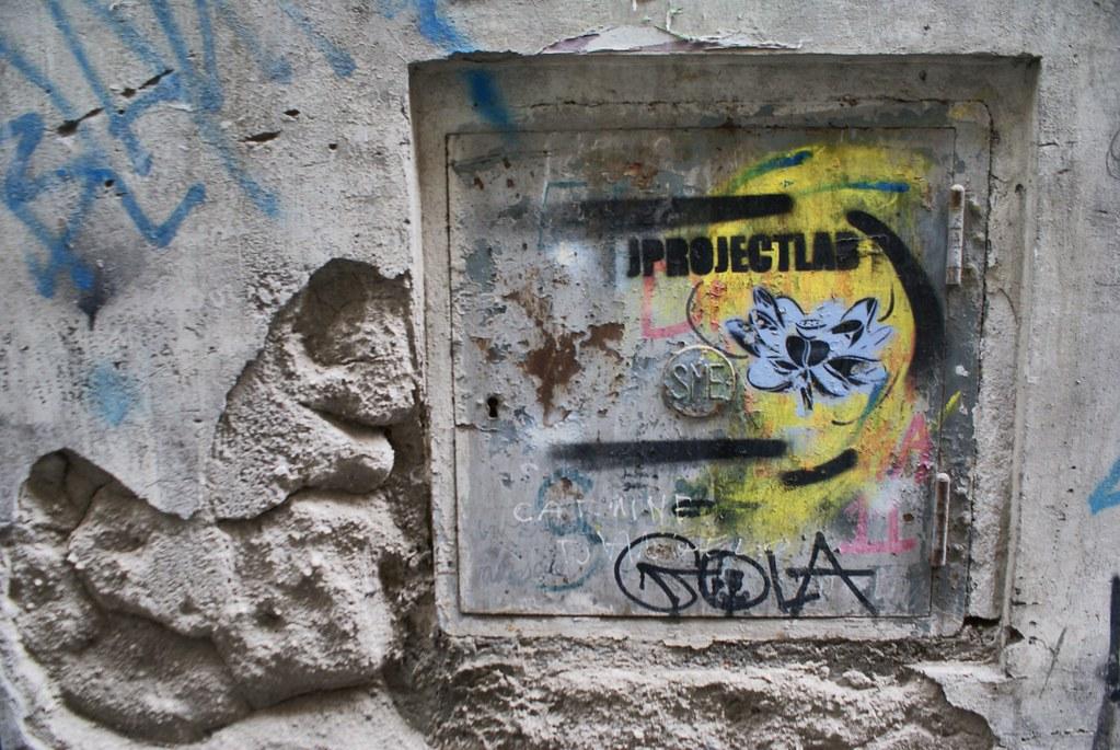Dessin botanique sur les murs de Naples.