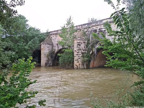 acueducto grisen y el rio jalon