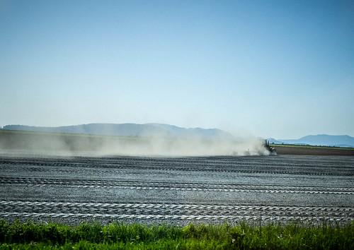Dusty Skagit Farms-002