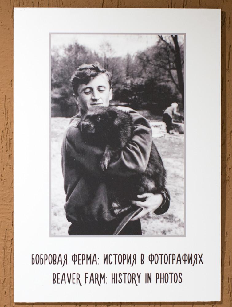 Заповедник Воронеж-11.jpg