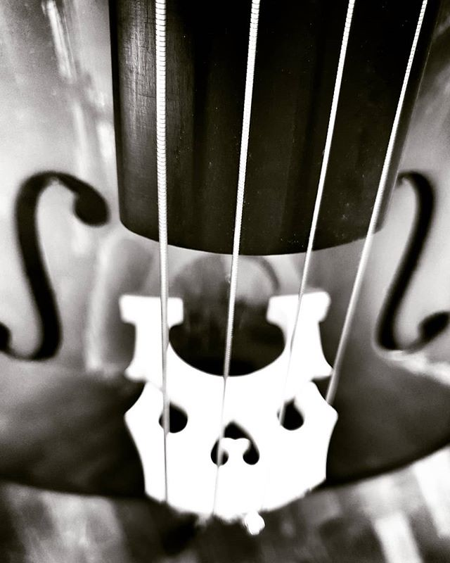 Playing cello #music #instrument #violoncello #cello #fun #suzuki #play #blackandwhite #bw #igers #igersmilano #igersitalia #sound #strings #wood