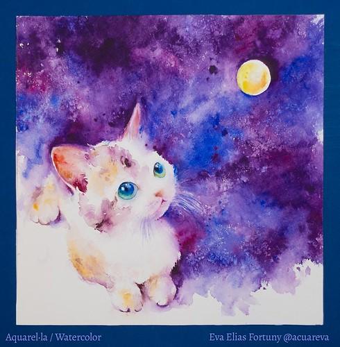 Gat contemplat la lluna. Aquarel·la infantil de l'Eva Elias a Llibres Artesans.