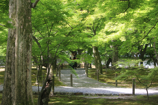tofukuji-sengyokukan027