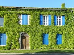 Les volets bleus - Photo of Saint-Christoly-Médoc