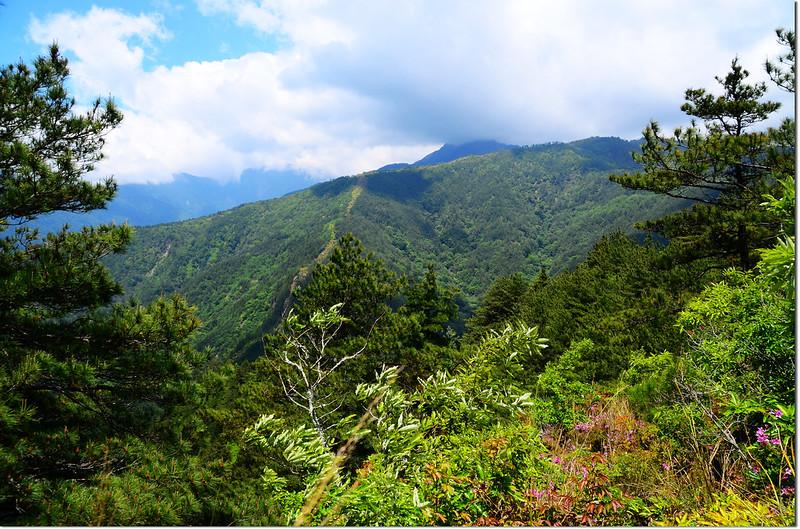 志良節山山頂展望 1