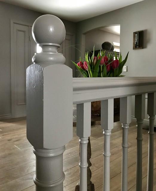 Tulpen traphek