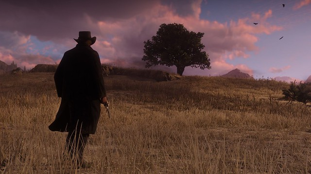 red-dead-redemption2_180504 (11)