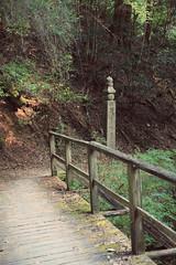 Choishi Michi trail, Koyasan