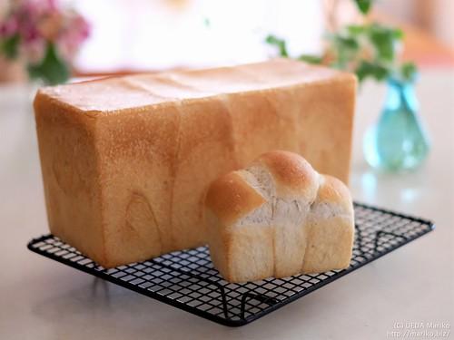 いちご酵母の食パン 20180511-DSCT4278 (2)