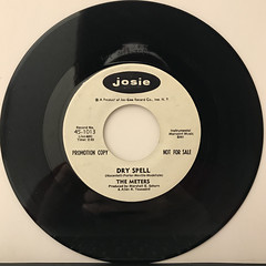THE METERS:DRY SPELL(RECORD SIDE-B)