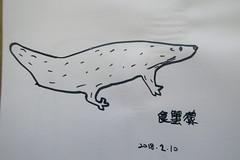 20180210-zozo畫食蟹獴