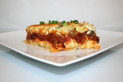 43 - Beefy sour cream noodle casserole - Side view / Cremiger Sauerrahm-Nudelauflauf - Seitenansicht