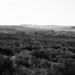 Bois des Fraux et lac du Cibial