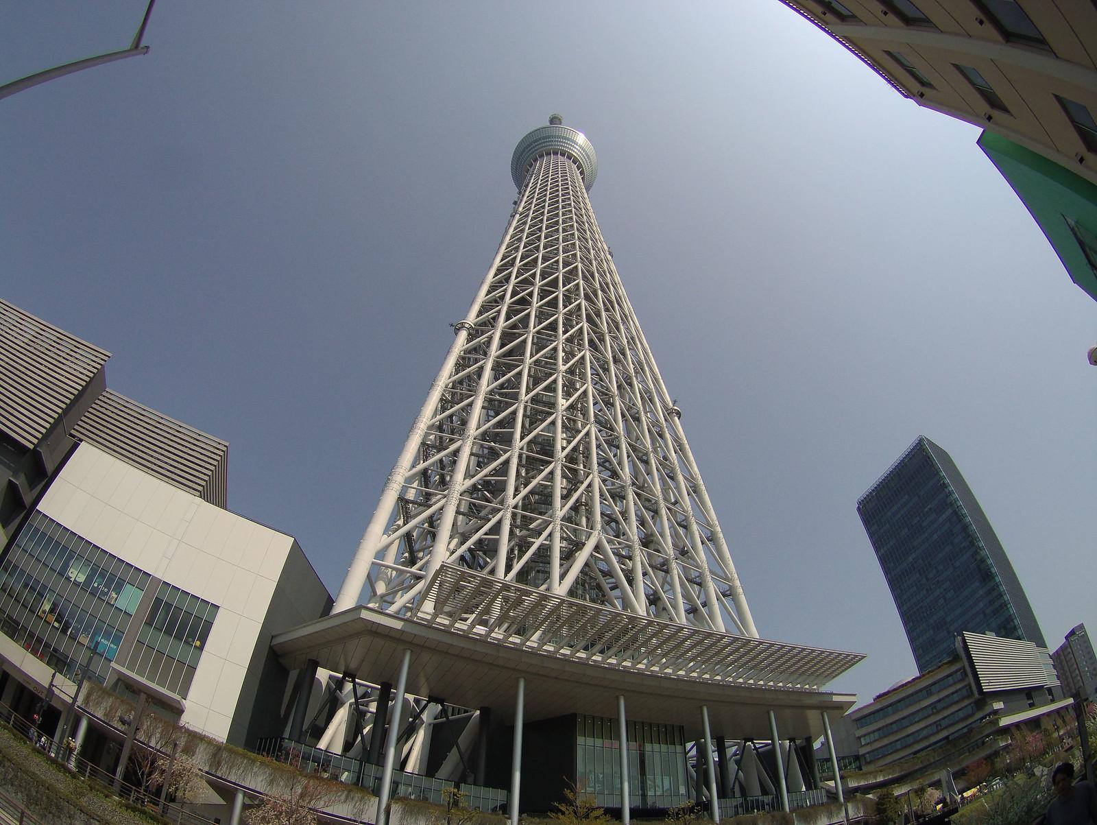 Skytree-1