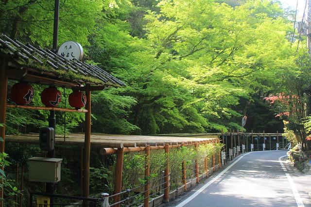 kifune-yui020