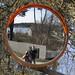 Spegelbild by Steffe