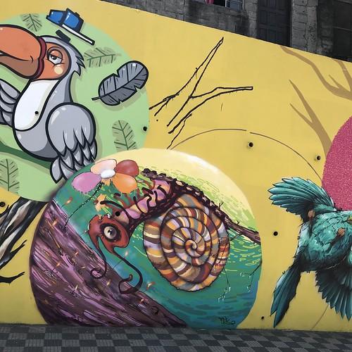 graffiti caieiras