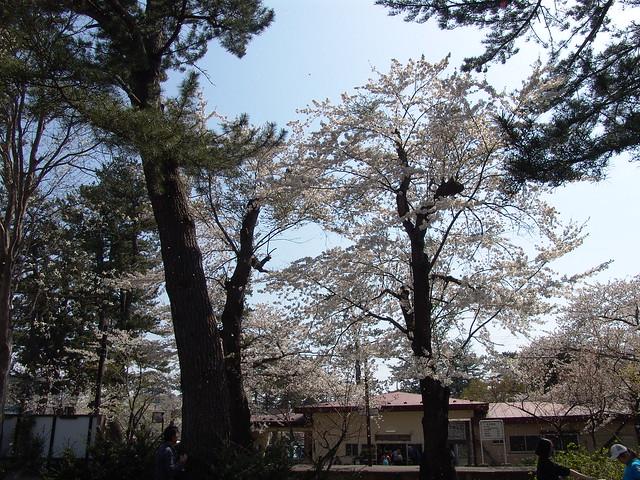 Ashino Park Station (芦野公園駅)