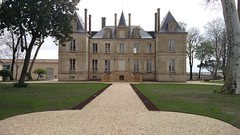 Château Latour - Photo of Cissac-Médoc
