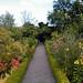 Garden path of Scottish Walled Garden