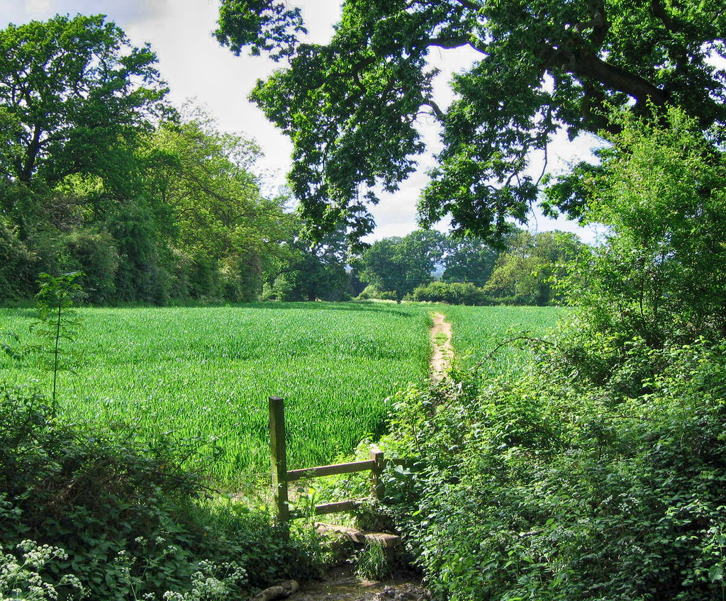 Footpath from Mickleton village in the Cotswolds. Credit JR P, flickr