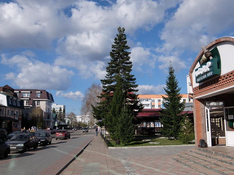 Белокуриха - Улица Академика Мясникова