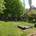 Irvine Old Parish Churchyard (219)