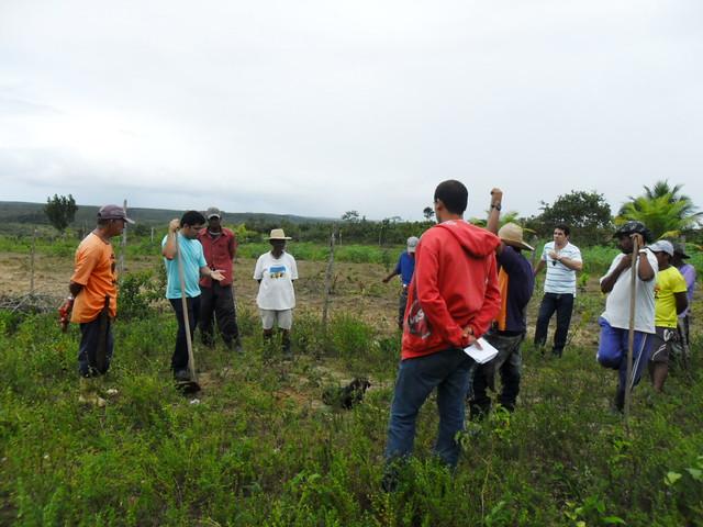 Projeto Frutificar - Quintais Produtivos para Agricultores Familiares na Bahia
