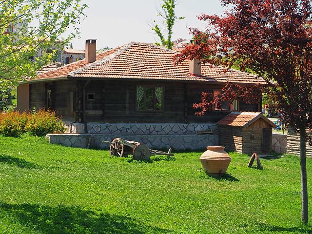 Altınköy'ün evleri
