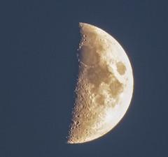 Moon half
