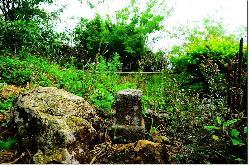 鳩州嶺山字森林三角點(Elev. 1073 m)