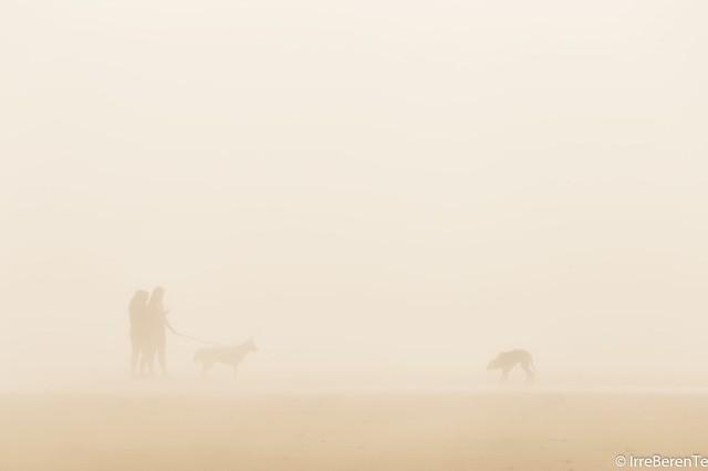 Days of beach and fog