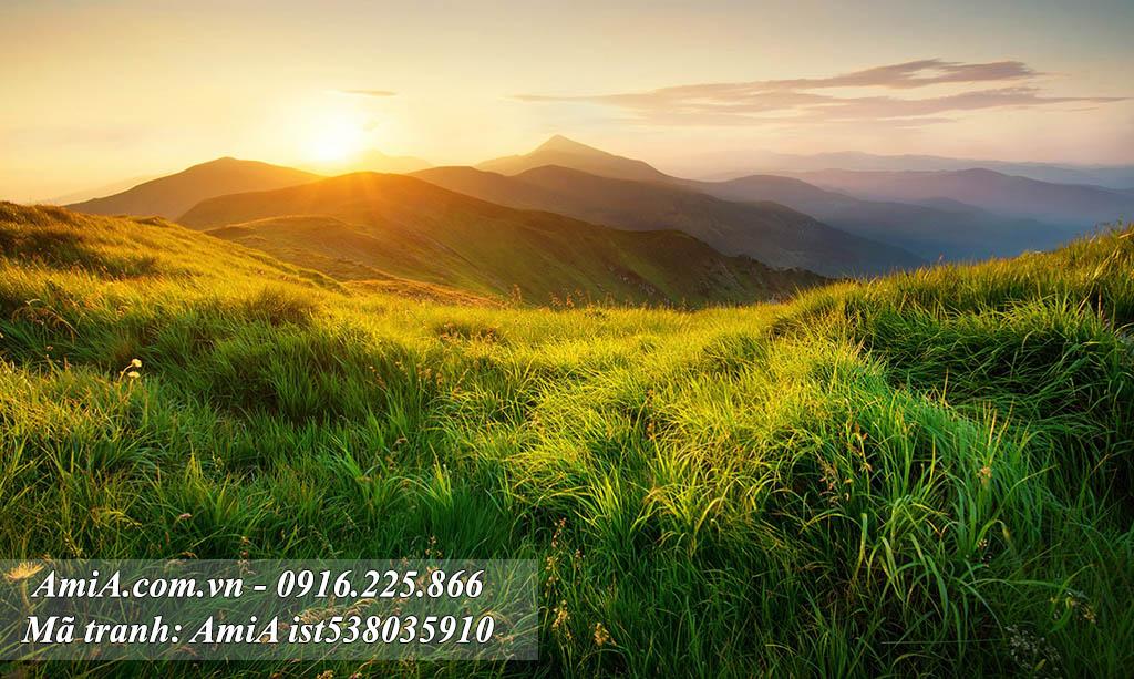 Tranh phong cảnh đẹp thiên nhiên đồi hoa nắng dưới ánh bình minh