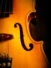classical music(0.0), viol(0.0), slide guitar(0.0), acoustic guitar(0.0), font(0.0), guitar(0.0), bass guitar(0.0), bowed string instrument(1.0), plucked string instruments(1.0), string instrument(1.0), viola(1.0), double bass(1.0), cello(1.0), illustration(1.0), string instrument(1.0),