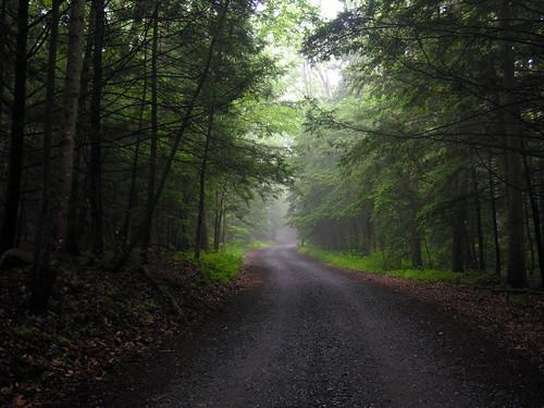 pennsylvania swatara chrisupdegrave