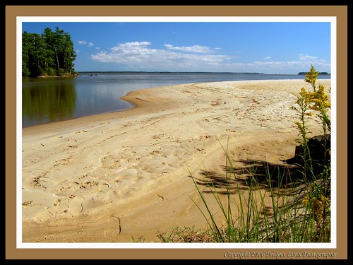 James River Beach View